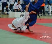 pesaro-2012_camp-ita-a-sq275