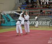 giaveno-2013_gran-prix-kata_033