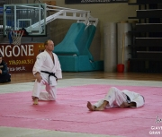 giaveno-2013_gran-prix-kata_040