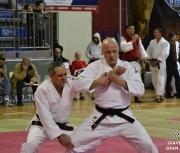giaveno-2013_gran-prix-kata_197
