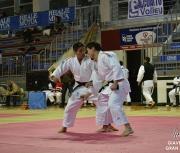 giaveno-2013_gran-prix-kata_207