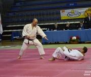 giaveno-2013_gran-prix-kata_222
