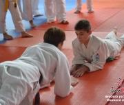 invorio-2013_weekend-di-judo_025