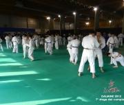 dalmine-2013_7-stage-dei-campioni009