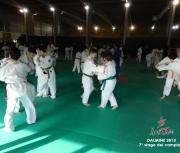dalmine-2013_7-stage-dei-campioni011
