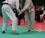 trofeo-expo-2012_sesto-s-giovanni_038