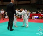 trofeo-sesto-s-giovanni-2012_071