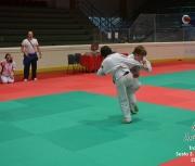 trofeo-sesto-s-giovanni-2012_303