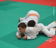 trofeo-sesto-s-giovanni-2012_315