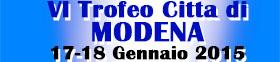 banner città di modena 2015_small
