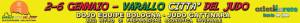 banenr Italia Judo giallo