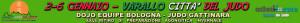 banenr Italia Judo verde