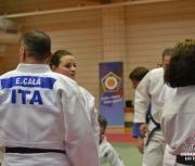 eju-expert-2014_lignano-ita_009